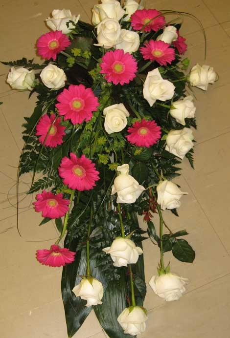 178 ruusu ja germini